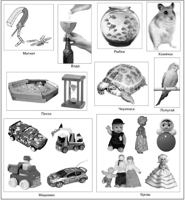 Карточки с изображением тем