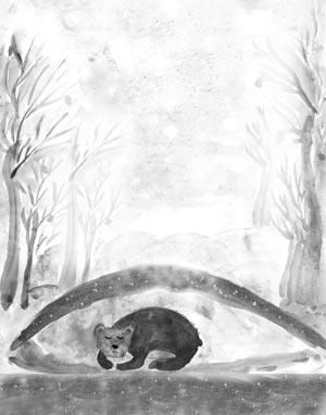 рисунок мишки в берлоге